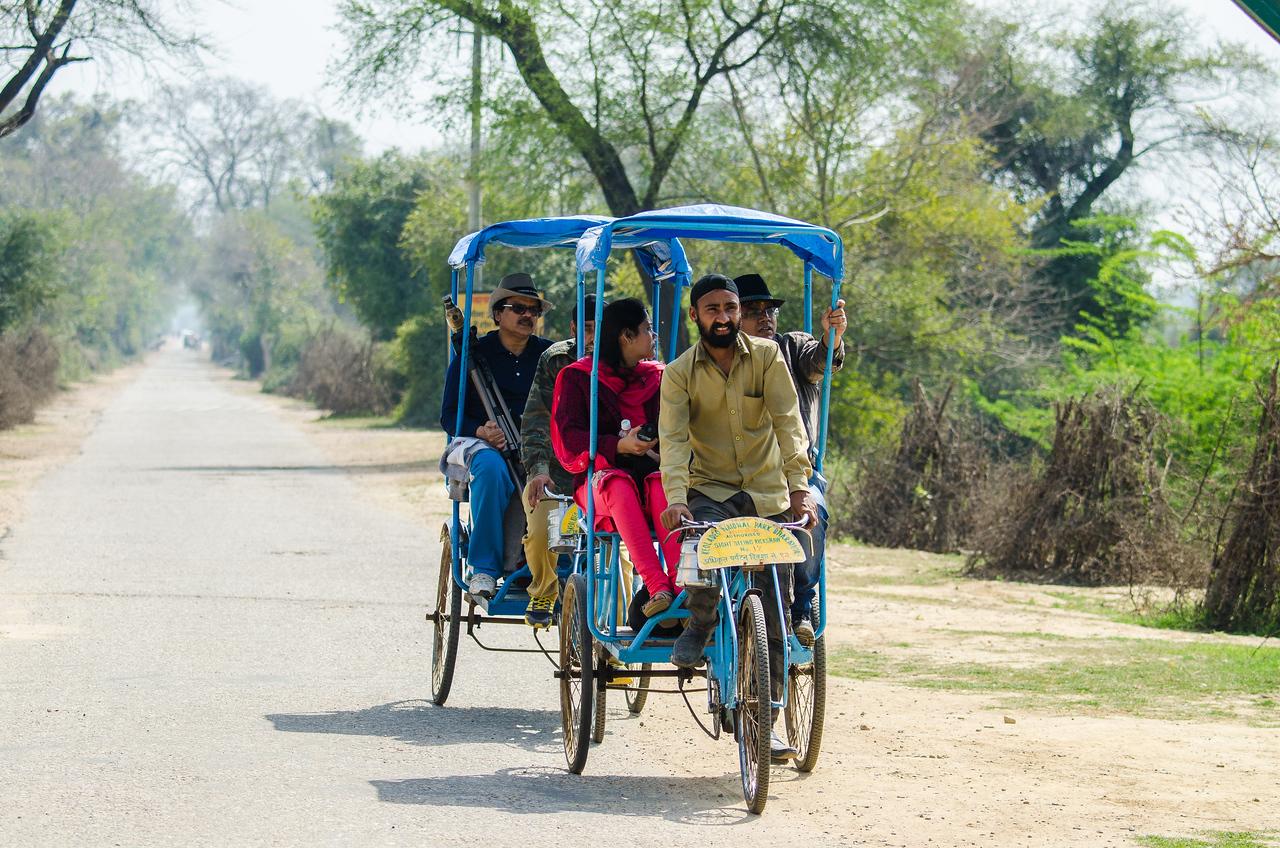 Pedicab Tour of Nature Park