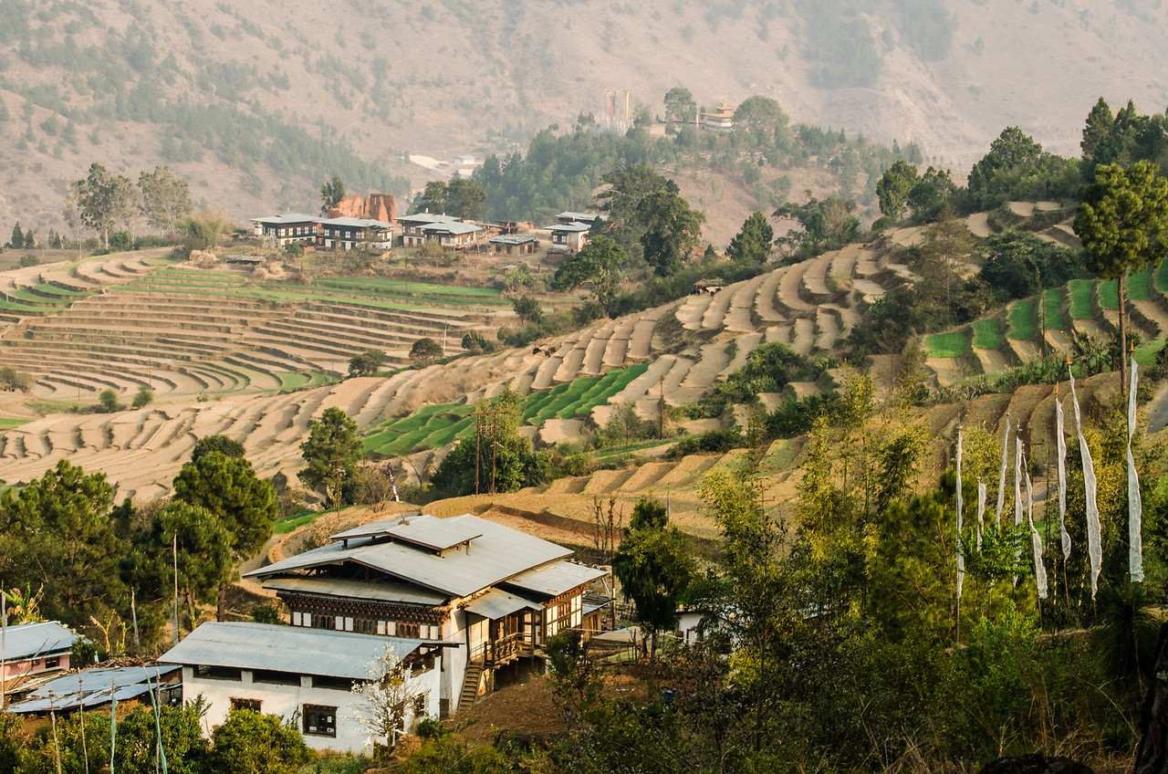 View of Terraced Fields from Dhensa Resort