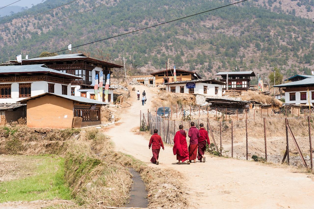 Monks, Punakha Valley, Bhutan