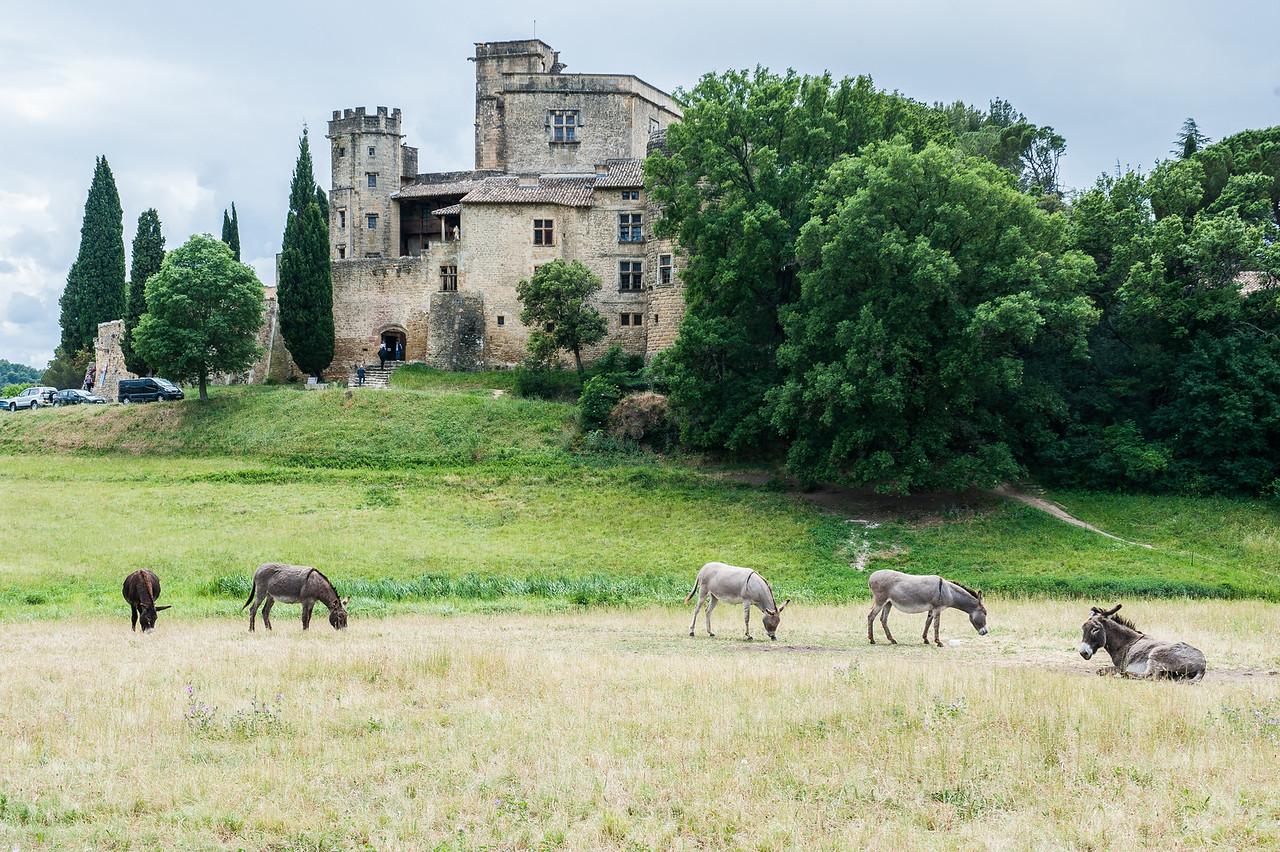 Castle at Lourmarin