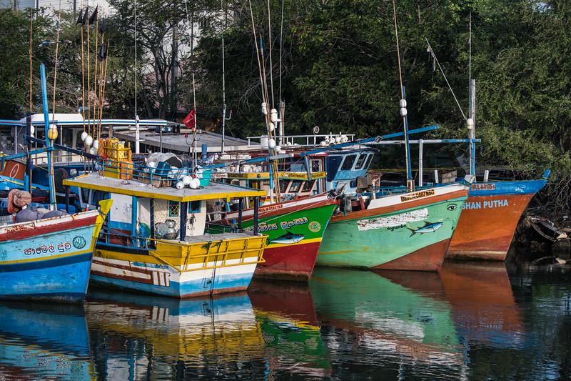Negombo Harbor Fishing Boats