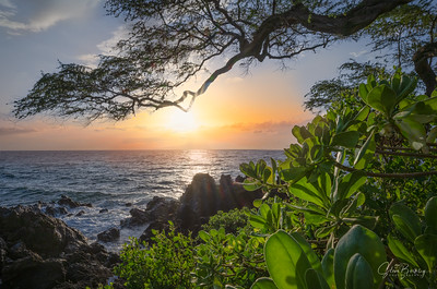 Maui Sunset II