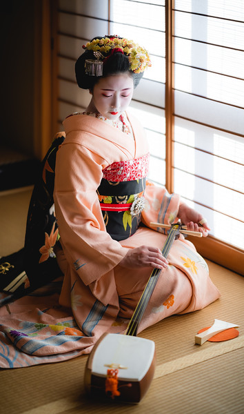 🇯🇵 Maiko with a shamisen