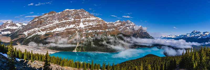 🇨🇦 Peyto Lake | Banff