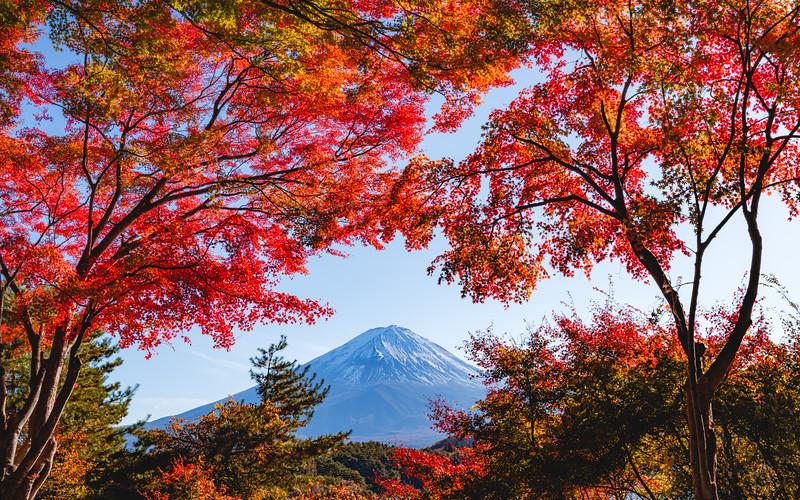 🇯🇵🗻🍁🍂 Mount Fuji