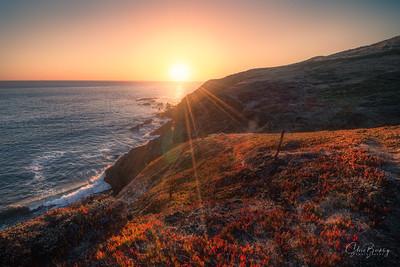 Marin Headlands XVIII