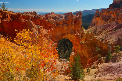An Arch in the Bryce Canyon NP