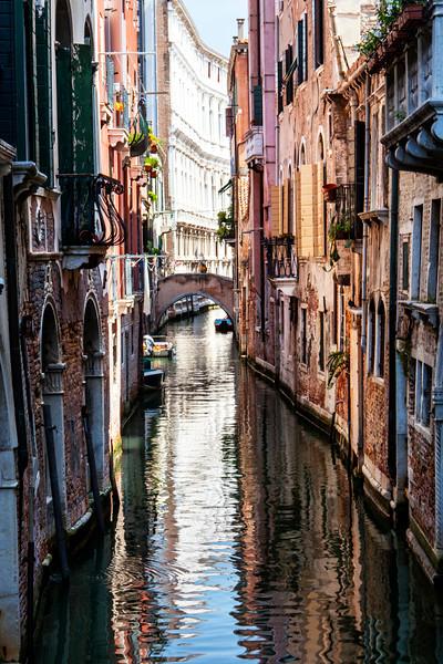 Venice7_MG_8072 copy