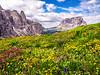 Dolomites3_DSC01945 copy