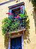 Verona Flower Box_DSC01840 copy