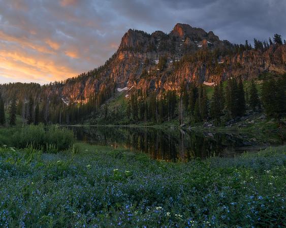 """Alpine Paradise"""