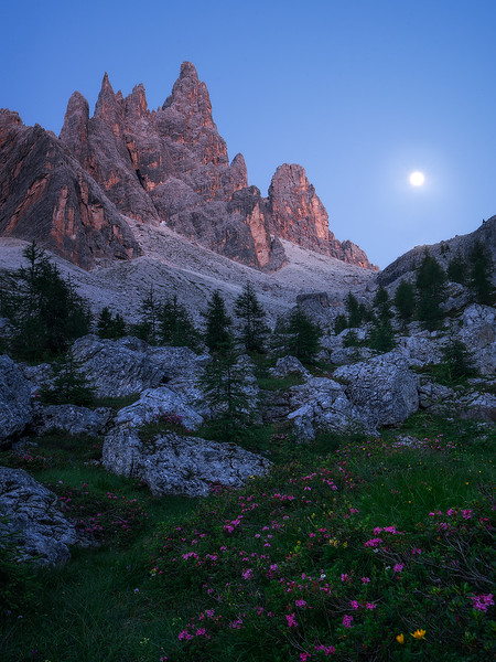 """""""Moonrise Kingdom"""""""