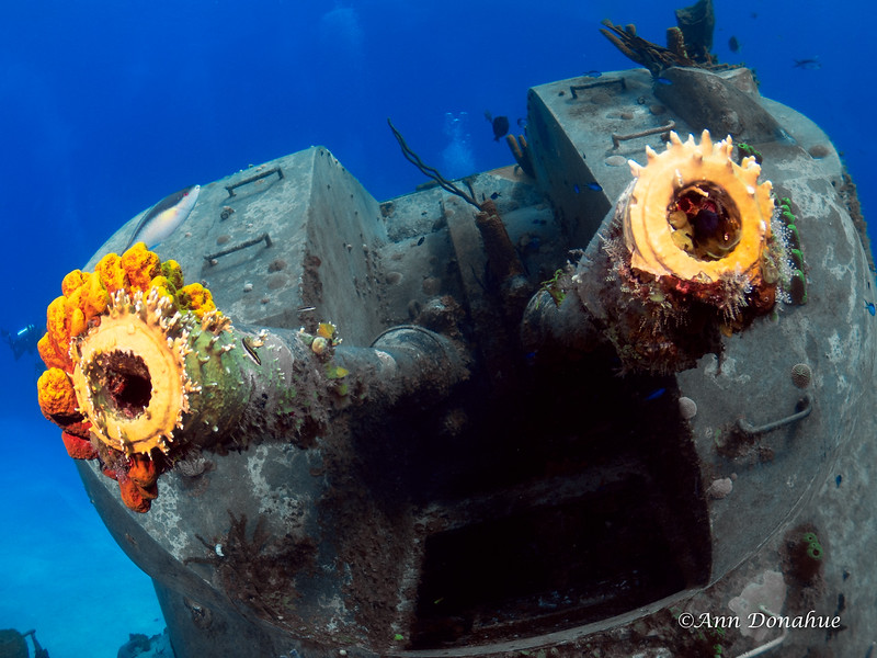 A Wreck with a Face!