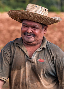 working the fields - Vinales