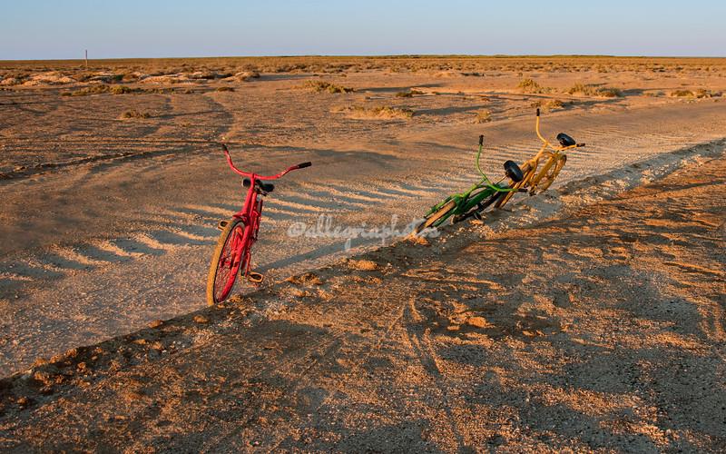Bicycles in the desert, Kuyimà Whale Camp, San Ignacio Lagoon