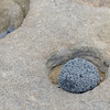 Santiago Island - James Bay - That is the way the round holes in the lava along the coastline are formed