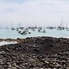 Santa Cruz Island - Puerto Ayora