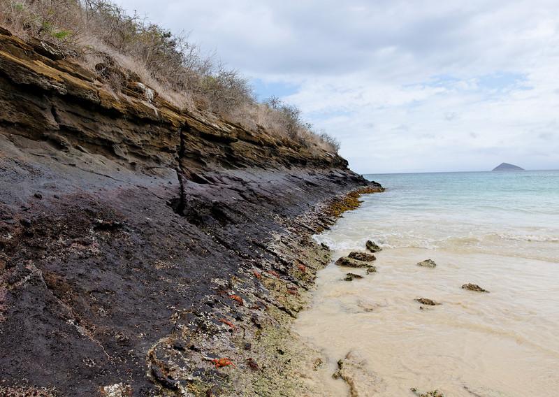 Floreana - Stingray Beach