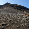 Bartolome Island - Central Volcano with Tiquilia Plants
