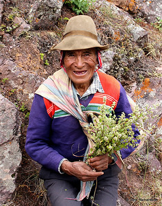 local villager wandering in Pisac