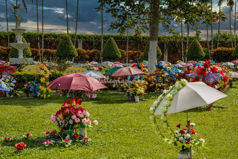 Garden of Eden, Peru