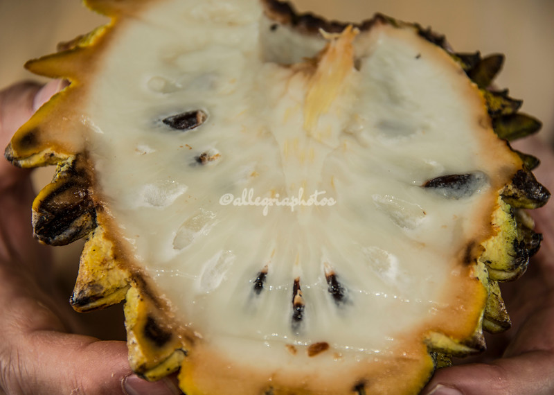 Annona Sugar Apple