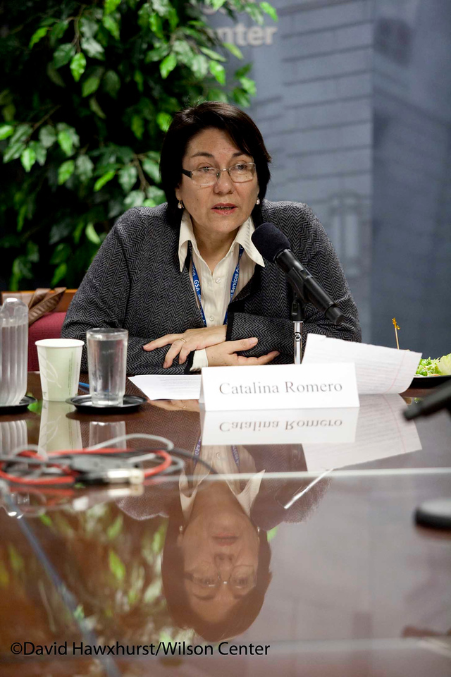 Religion and Values in the Formation of a Democratic Public Space in Latin America<br /> <br /> Speaker(s): Catalina Romero