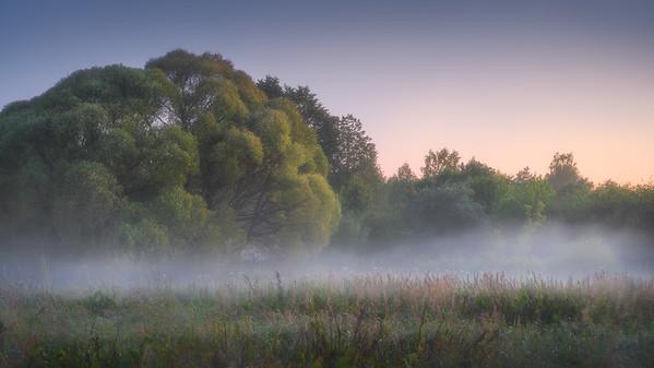 Sleeping Fog