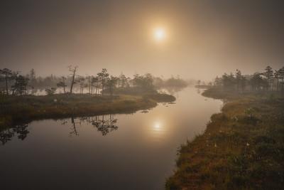 Kemeri Bog Sunrise