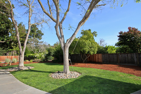 773 Berry, Los Altos