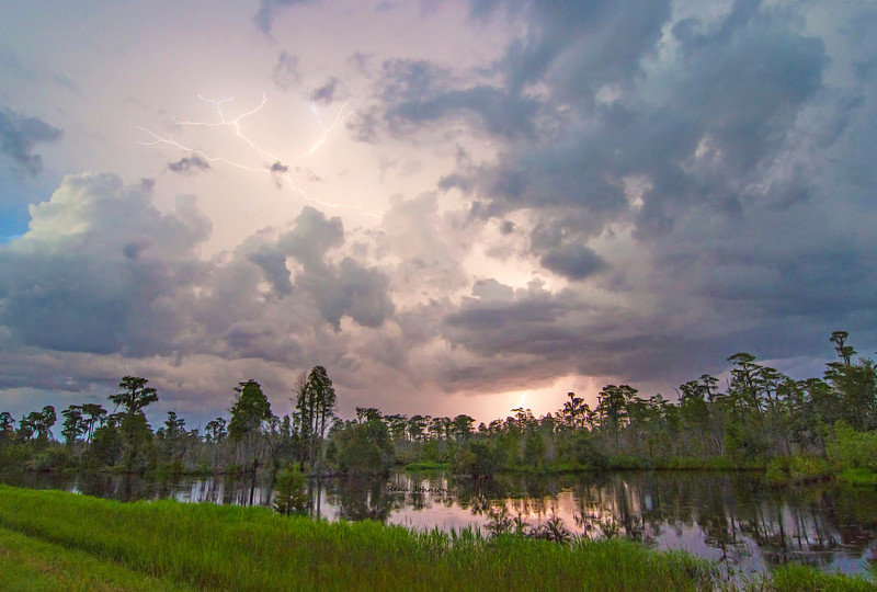 Storm Over the Okefenokee