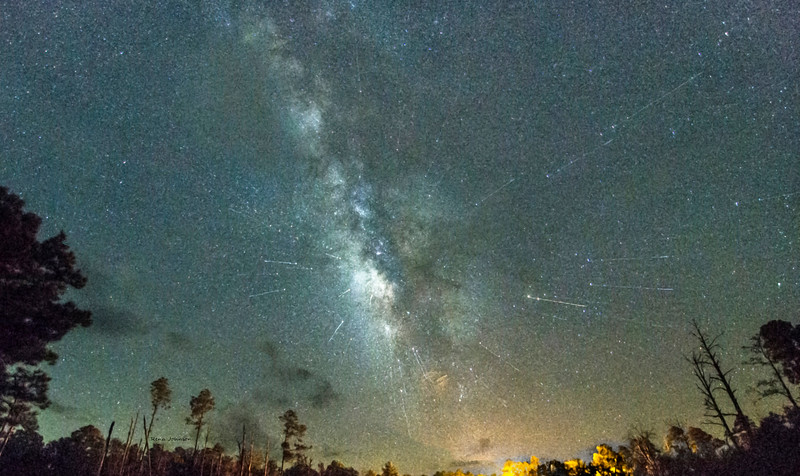 Two Meteor Showers at Once Okefenokee Stephen C Foster