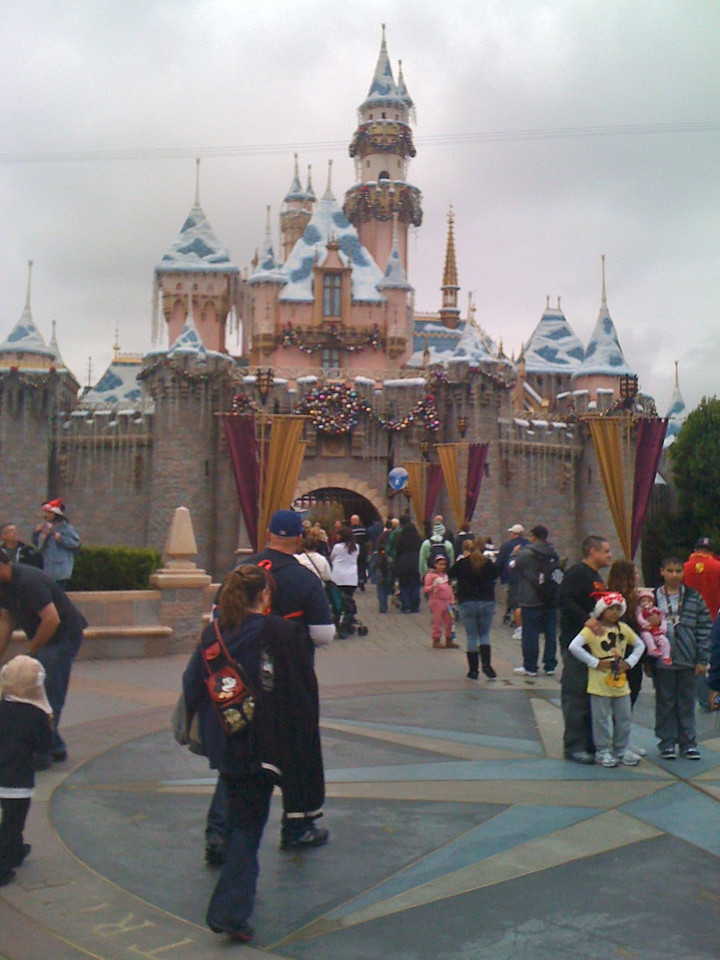 Festooned castle<br /> Disneyland