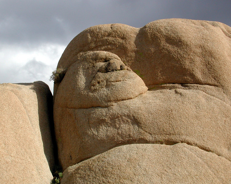 Jaba the Rock at Joshua Tree National Park, California