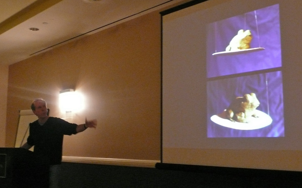 David Wiesner showing how he used source material (maquettes) to show angles and views for illustrations. He used this frog for 'Tuesday.'