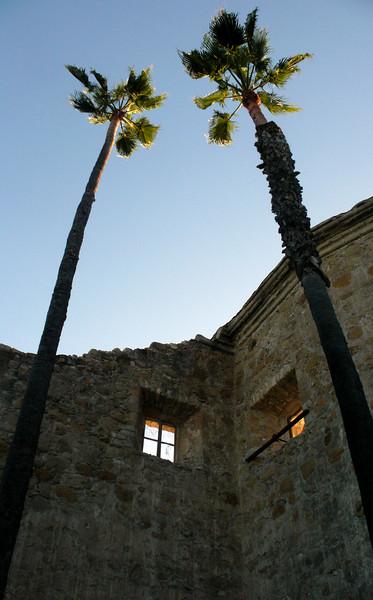 Palm Trees<br /> Mission San Juan Capistrano