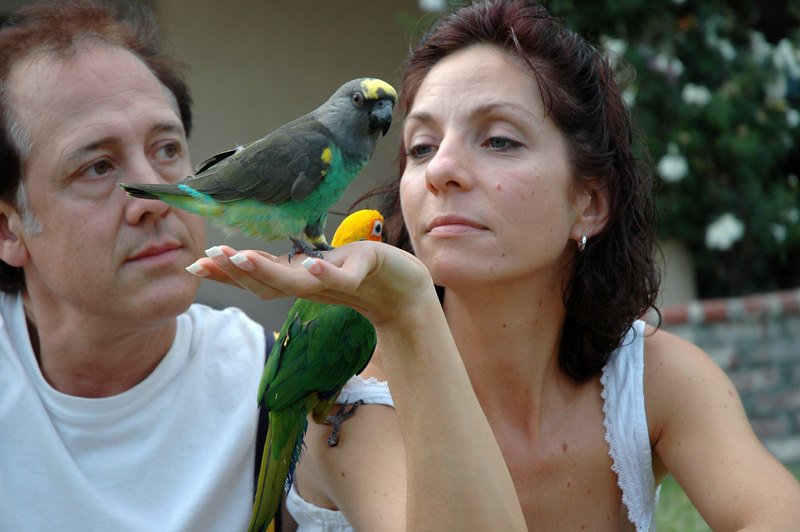 Skip and Dawn and their Parrots
