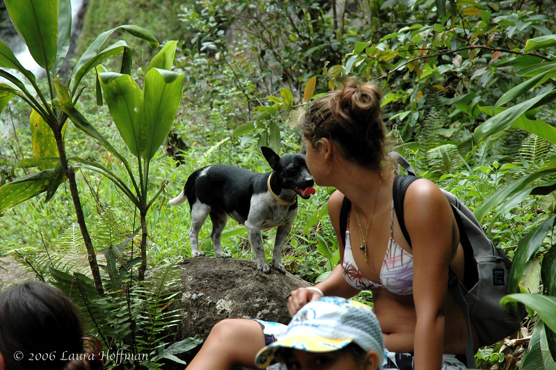 Dog and Girl at Haiawa Valley on Molokai, Hawaii