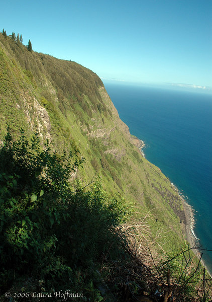 The Pail trail to Kalaupapa, Moloka'i