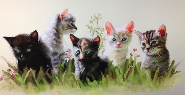 "This image is available in high quality prints for sale. Makes a great gift for cat lovers! Pastel on paper 23""x17"" 2013"