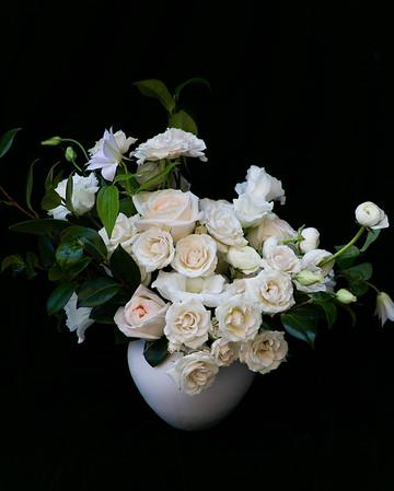 lauren florography