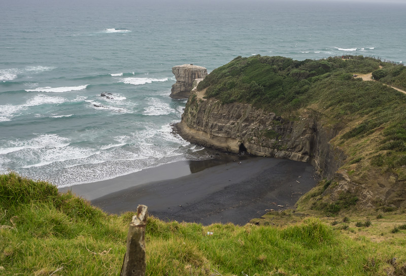 Gannet Colony, Muriwai Beach near Auckland