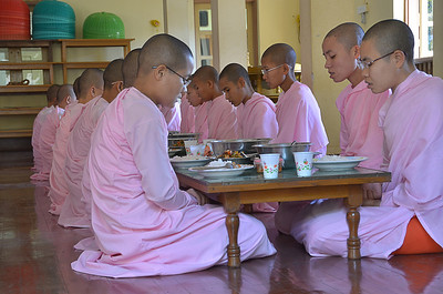 Buddhist nuns at prayer