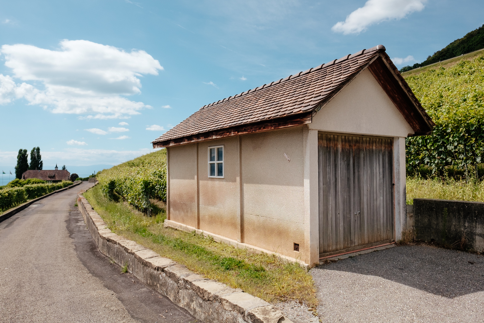 A shed in the vineyards, Lavaux