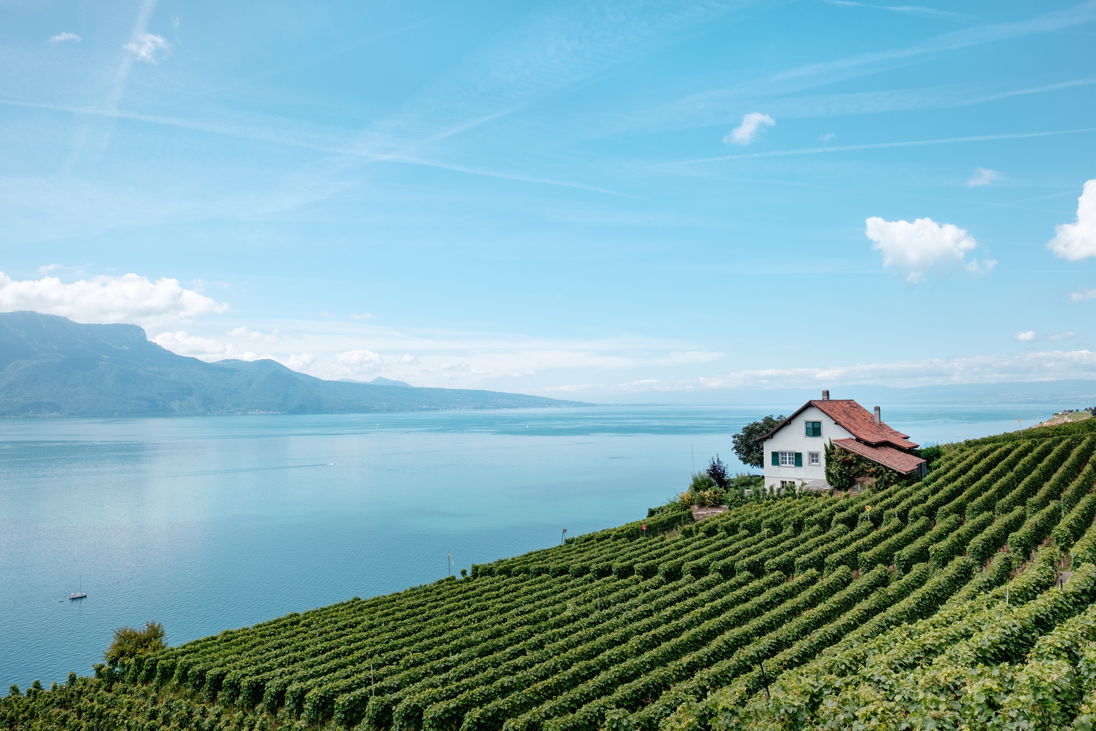 A house in the vineyards, Lavaux