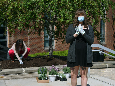 Lavender Planting Ceremony