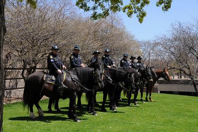 Horse Patrol- Police