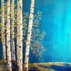 Primal Elegance #8   36x48 on canvas