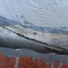 Brick wall damage, Jan 2013