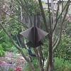 Birdfeeder 101